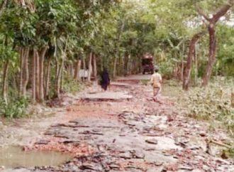 লক্ষ্মীপুরে রামগতি ভেঙ্গে পড়েছে গ্রামীণ সড়ক
