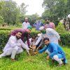 আ.হক কলেজের ৮২ তম প্রতিষ্ঠা বার্ষিকীতে মমতাজ-মাসুমা ফাউন্ডেশনের বৃক্ষ রোপণ